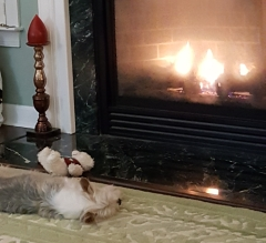 Sasha fireplace